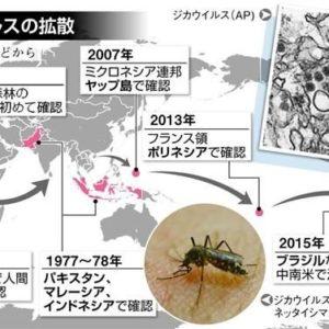 ヤブ蚊などによるジカ熱の感染