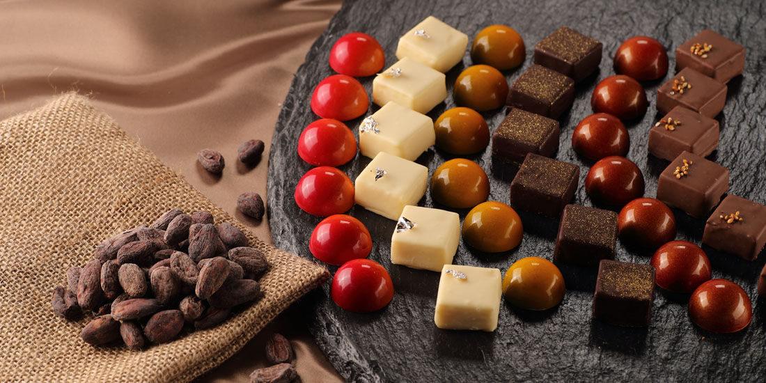 チョコレートに含まれるカカオポリフェノールは若返りの成分?