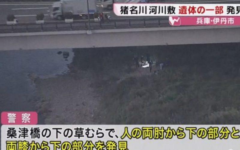 兵庫県伊丹市の猪名川河川敷でバラバラに解体された男性の遺体