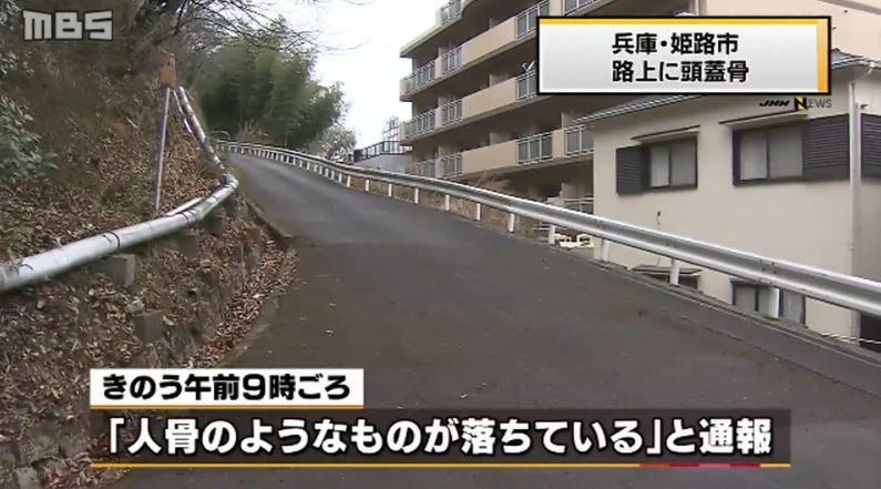兵庫県姫路市にある山林脇の道路に人間の頭蓋骨が転がり落ちる
