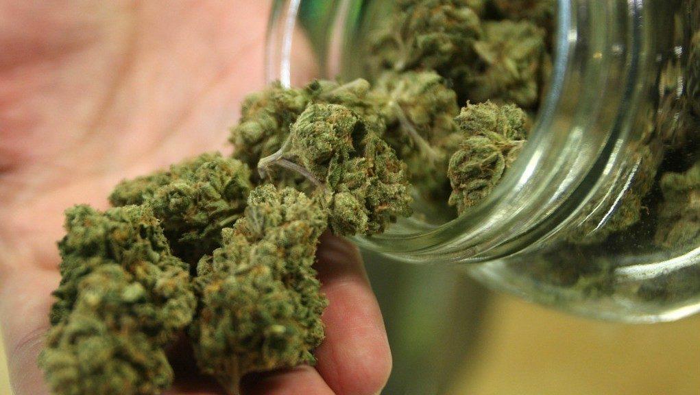 専門家が警鐘を鳴らす大麻は幻覚や幻聴を起こす覚醒剤と同じ薬物の認識