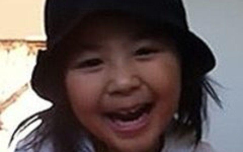 千葉県我孫子市で登校途中に誘拐された女児殺害事件