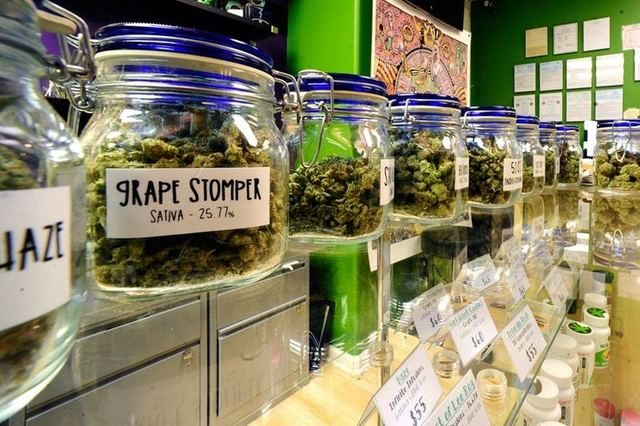 カリフォルニア州で大麻の解禁