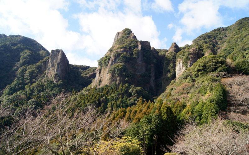 佐賀県武雄市の山林にある雑木林で白骨遺体