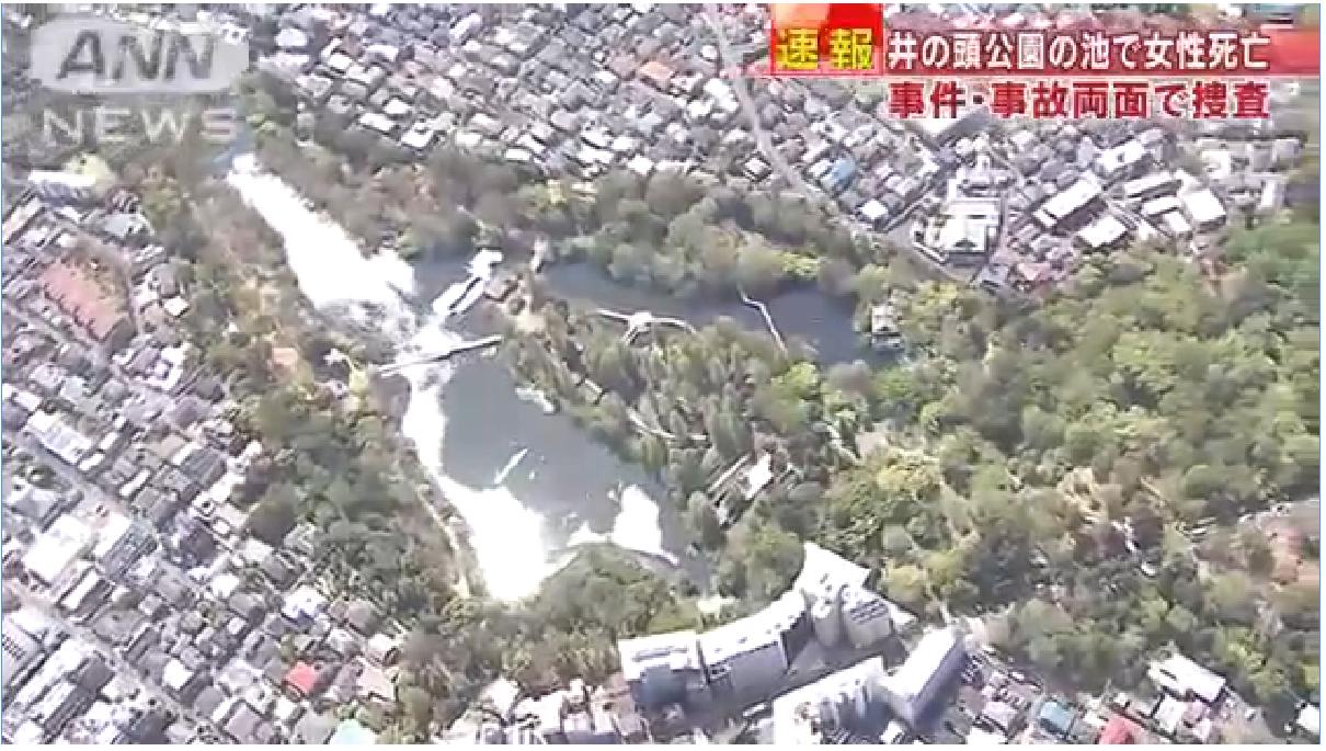 東京都三鷹市にある井の頭公園の池で女性の遺体