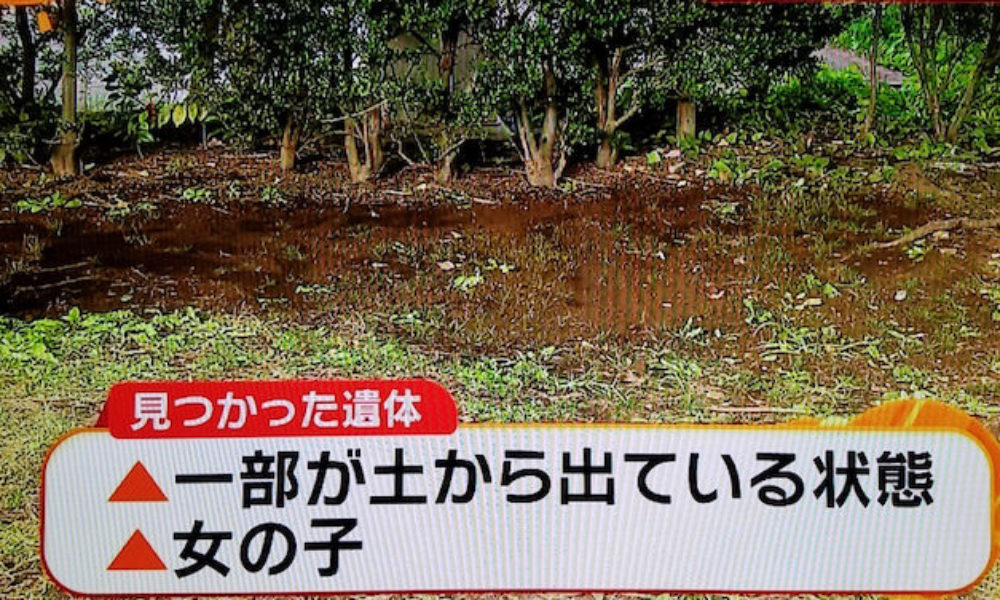 東京都港区にあるイタリア公園の敷地内に埋められていた女児の遺体