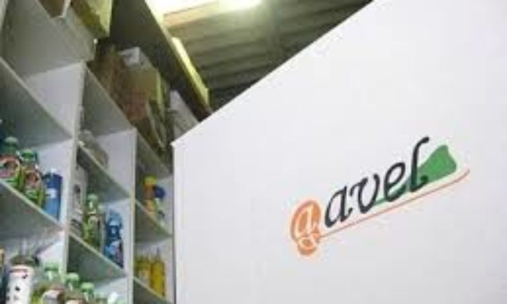 熊本県内の企業でペット用通信販売会社のアヴェルが破産申請