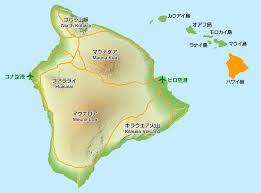ハワイ島で日本人の芸術家が殺害された遺体