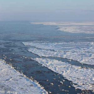 南極大陸で最高気温が20度を超える現象が起き地球温暖化の異常気象