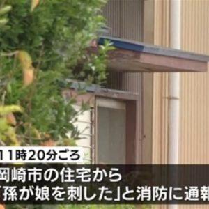 愛知県岡崎市の住宅で女性が殺害され甥の高1男子が自殺
