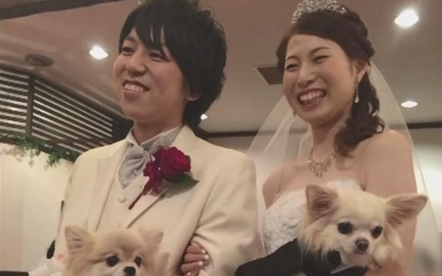 和歌山県白浜町の海で自殺に見せかけ妻を殺害した容疑の夫に懲役20年の求刑