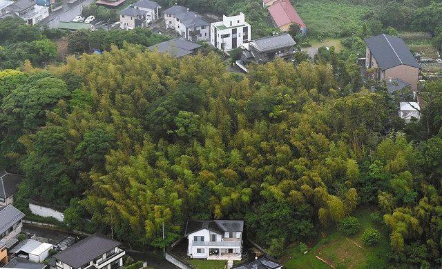 千葉県袖ケ浦市の竹林で美容師見習いの女性が殺害された遺体