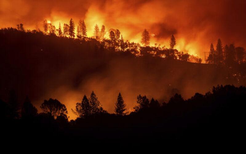 米国カリフォルニア州で発生した森林火災は女性殺害を隠蔽する為の放火