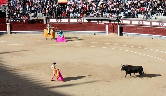 スペインで殺害した母親の肉を食べた男に禁錮15年の判決