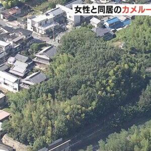 奈良市の雑木林で女性介護職員の遺体が発見されている殺人事件