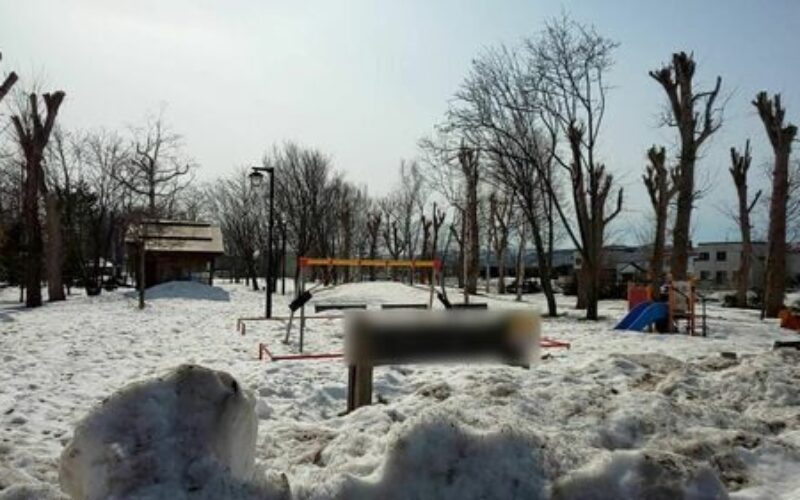 北海道旭川市内に住む中学二年生の女子生徒が公園で凍死