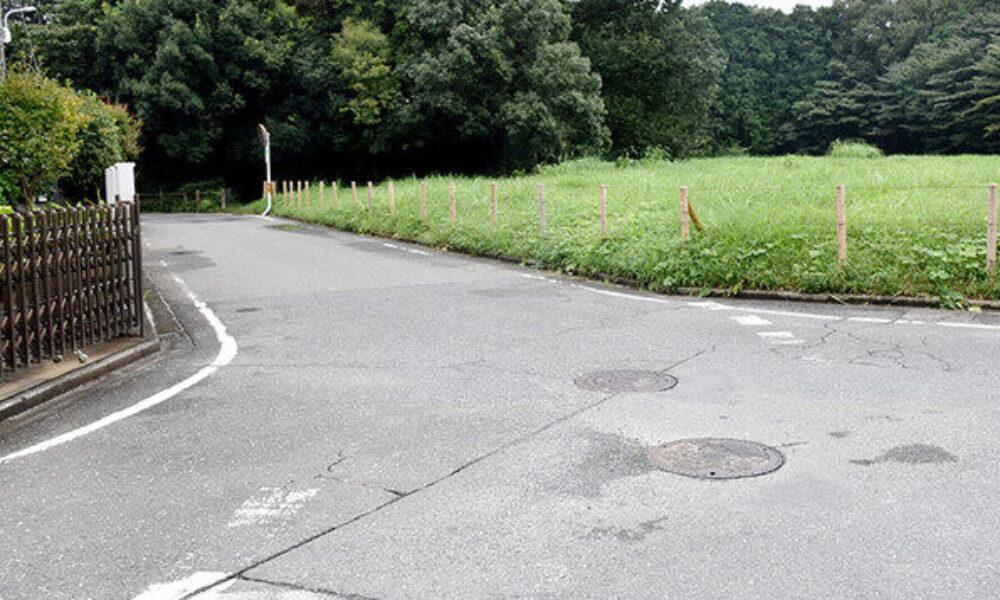 埼玉県川越市の路上で60代の男性をひき逃げした容疑で大学生を逮捕