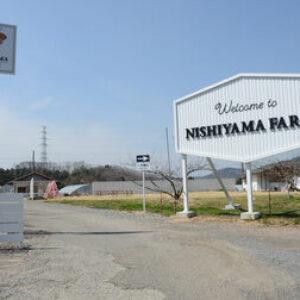 農産物生産会社の西山フォームで役員が元本保証を名目にした詐欺事件